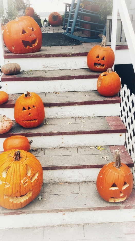 Pumpkin Steps | jacqhumphrey.com